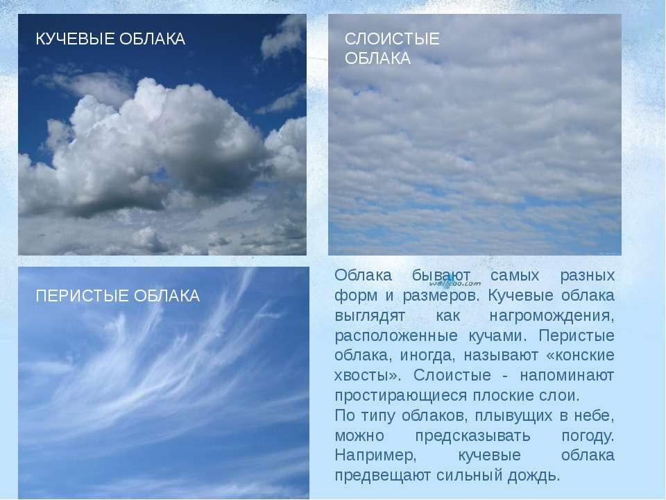 Облака бывают самых разных форм и размеров. Кучевые облака выглядят как нагро...