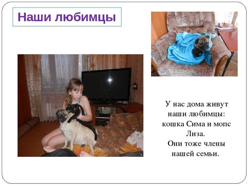 Наши любимцы У нас дома живут наши любимцы: кошка Сима и мопс Лиза. Они тоже ...