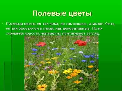 Полевые цветы Полевые цветы не так ярки, не так пышны, и может быть, не так б...