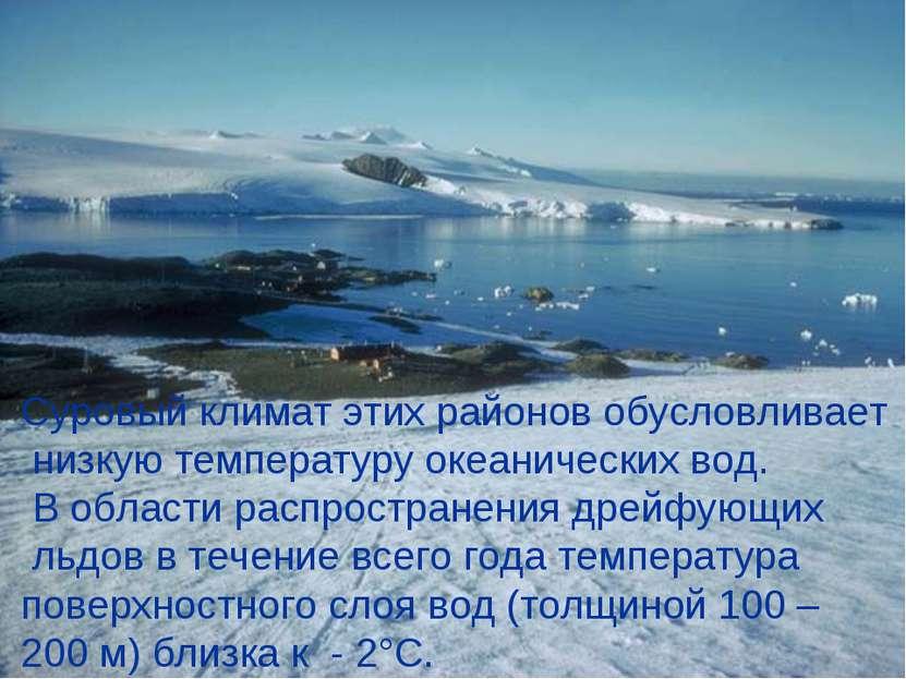 Суровый климат этих районов обусловливает низкую температуру океанических вод...