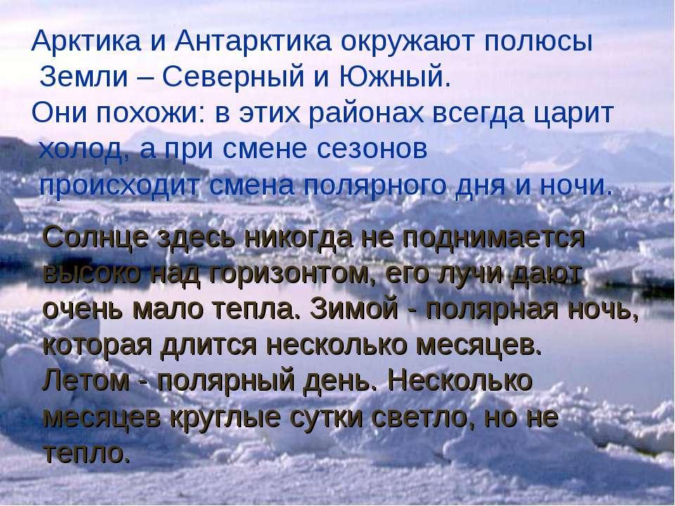 Арктика и Антарктика окружают полюсы Земли – Северный и Южный. Они похожи: в ...