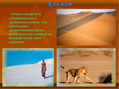 Климат Египет находится в субтропическом и тропическом поясах. Там преобладаю...
