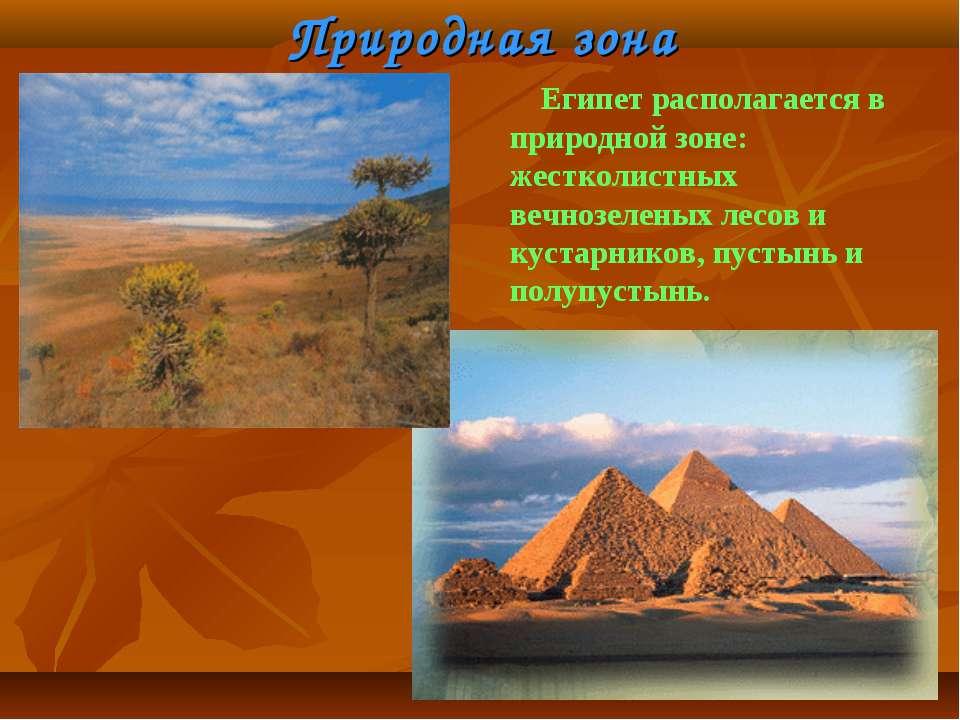 Природная зона Египет располагается в природной зоне: жестколистных вечнозеле...