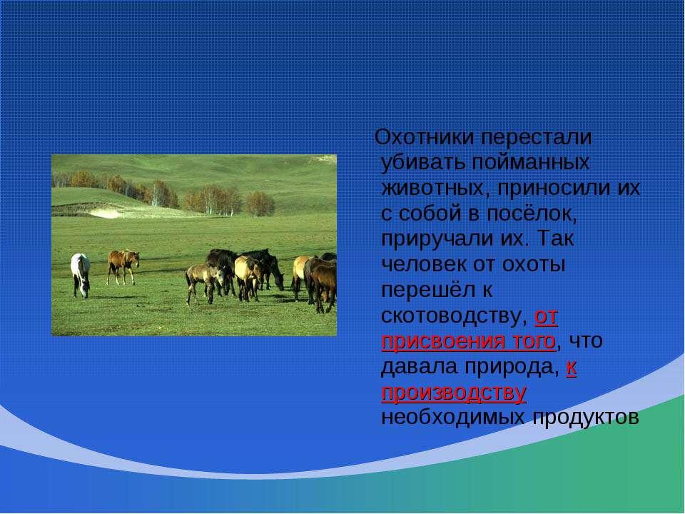Охотники перестали убивать пойманных животных, приносили их с собой в посёлок...