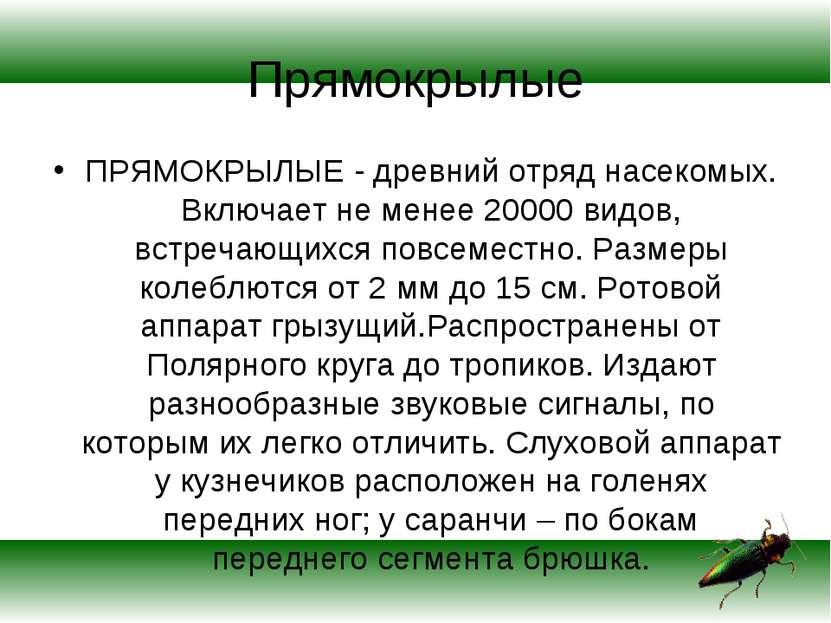 Прямокрылые ПРЯМОКРЫЛЫЕ - древний отряд насекомых. Включает не менее 20000 ви...
