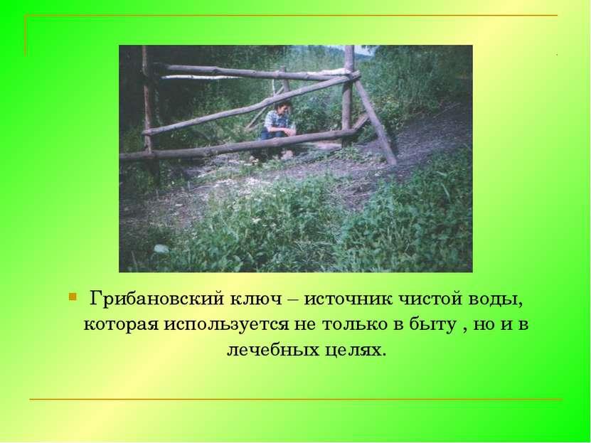 Грибановский ключ – источник чистой воды, которая используется не только в бы...