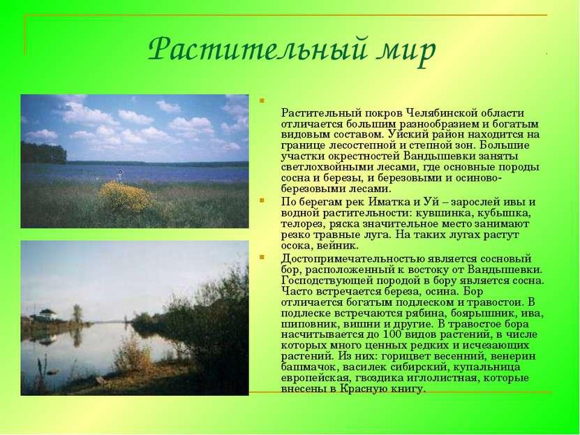 Растительный мир Растительный покров Челябинской области отличается большим р...