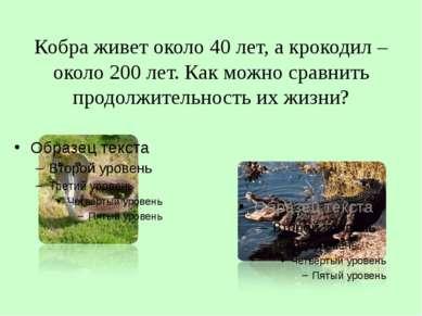 Кобра живет около 40 лет, а крокодил – около 200 лет. Как можно сравнить прод...