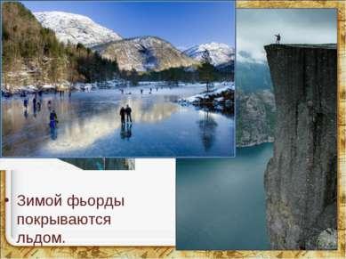 Над фьордами поднимаются отвесными стенами скалы. Зимой фьорды покрываются ль...