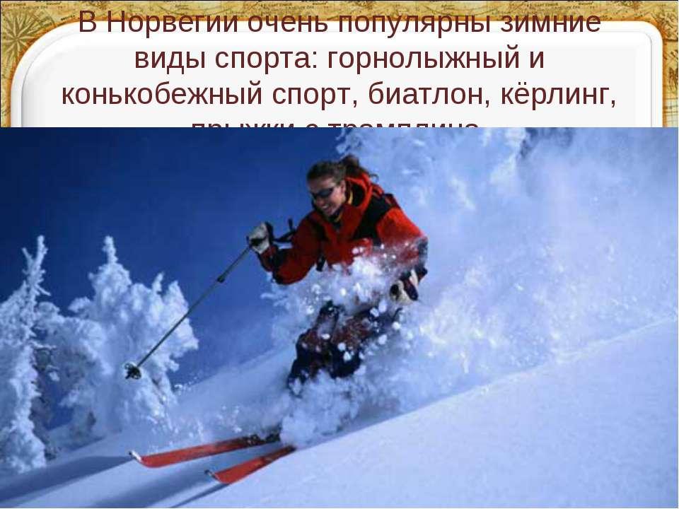 В Норвегии очень популярны зимние виды спорта: горнолыжный и конькобежный спо...