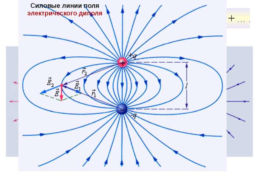 Силовые линии электрических полей Силовые линии кулоновских полей Силовые лин...