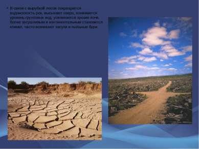 В связи с вырубкой лесов сокращается водоносность рек, высыхают озера, понижа...
