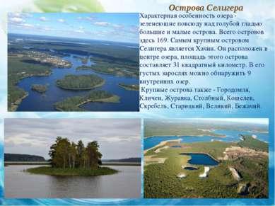 Острова Селигера Характерная особенность озера - зеленеющие повсюду над голуб...