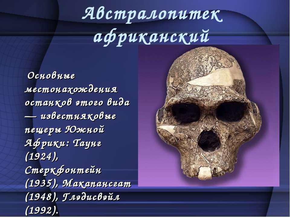 Австралопитек африканский Основные местонахождения останков этого вида — изве...