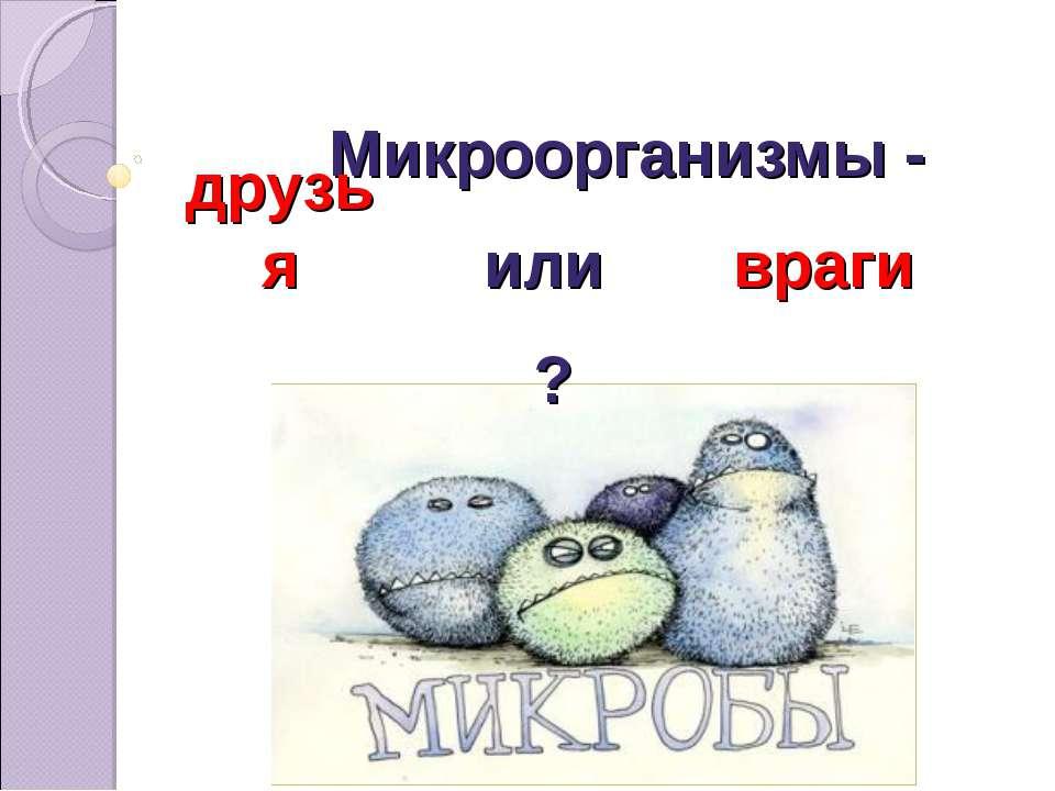 Микроорганизмы - друзья враги или ?