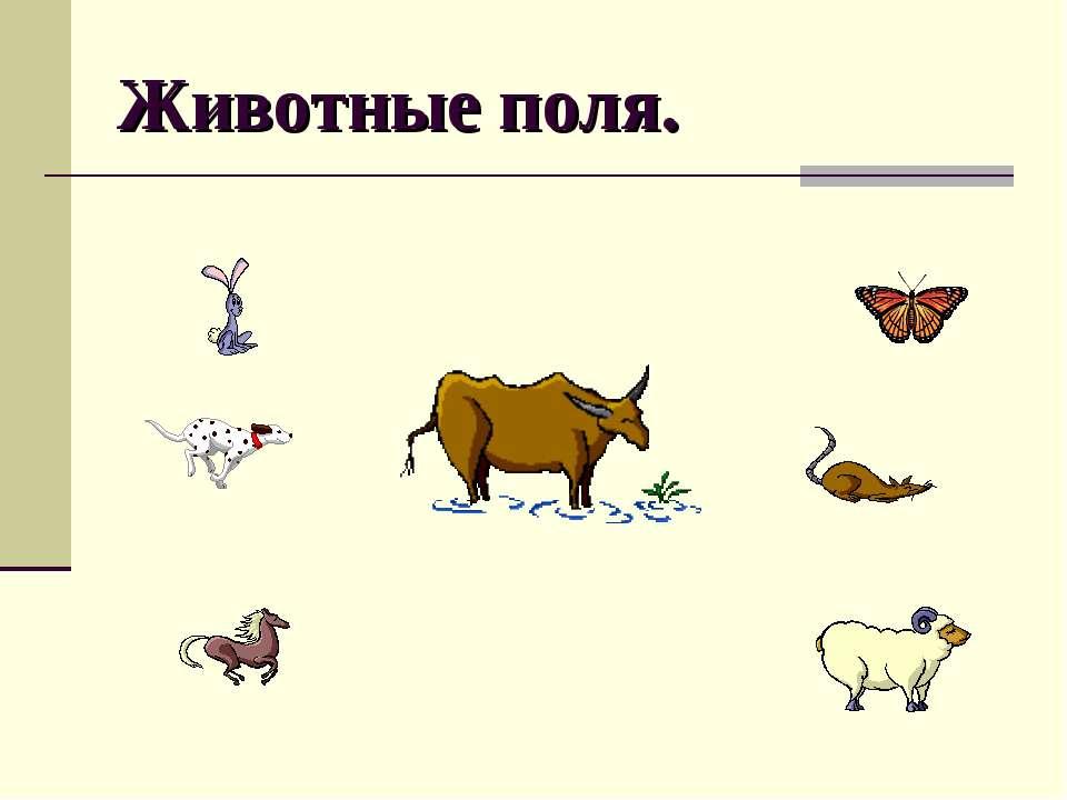Животные поля.