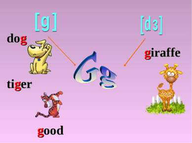 dog tiger giraffe good