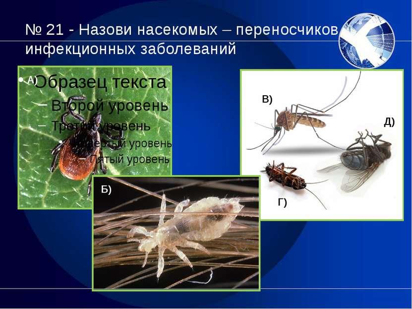 № 21 - Назови насекомых – переносчиков инфекционных заболеваний А) Б) В) Г) Д)