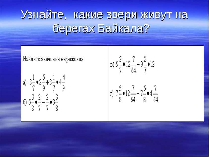 Узнайте, какие звери живут на берегах Байкала?