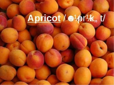 Apricot/ˈeɪprɪkɒt/