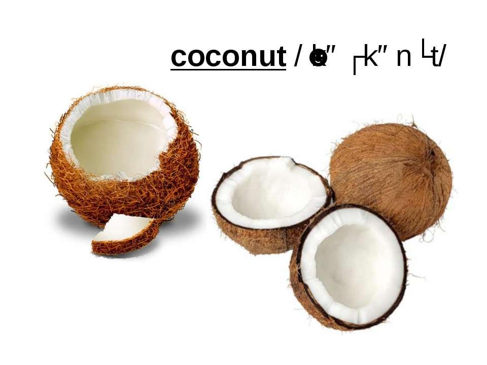 coconut/ˈkəʊkənʌt/