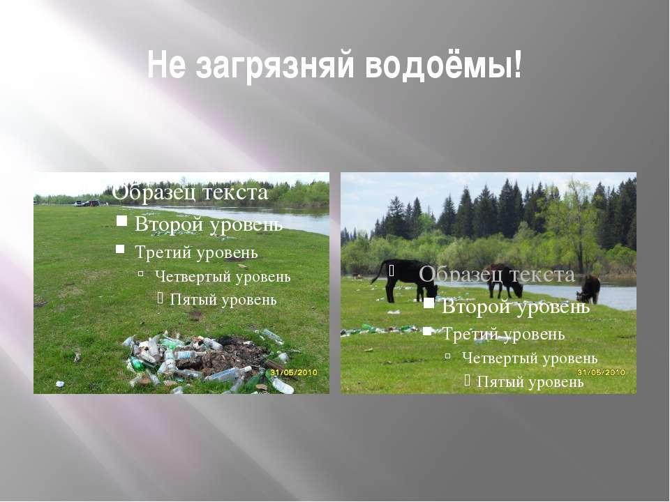 Не загрязняй водоёмы!