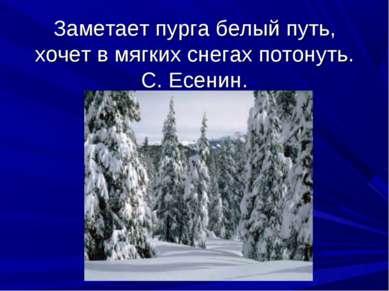 Заметает пурга белый путь, хочет в мягких снегах потонуть. С. Есенин.