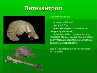 Питекантроп Характеристика: -V мозга - 900 см3; - рост – 1.5 м; - выпрямленно...