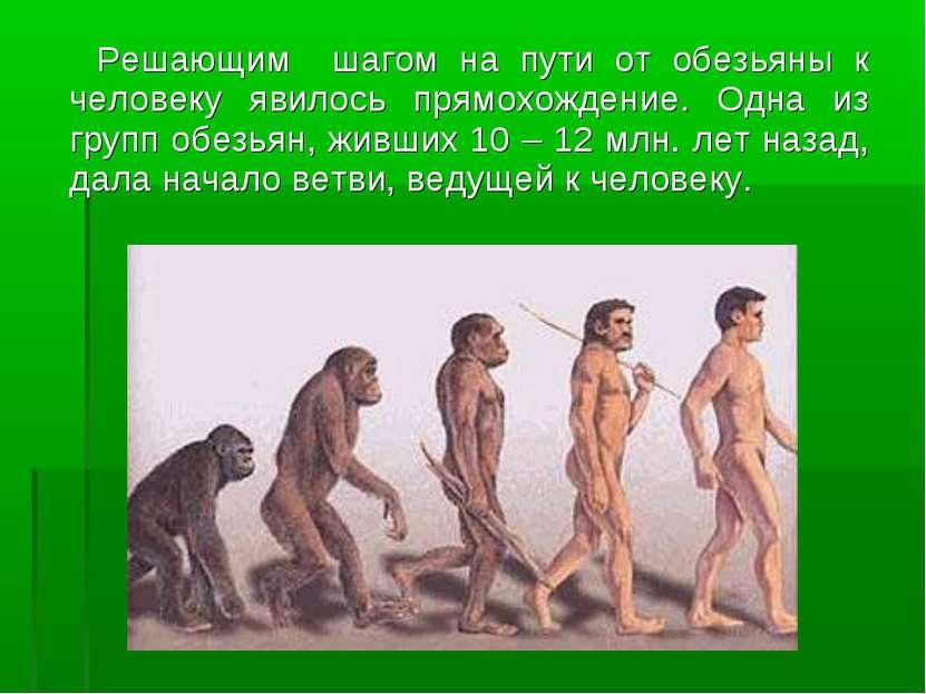 Решающим шагом на пути от обезьяны к человеку явилось прямохождение. Одна из ...