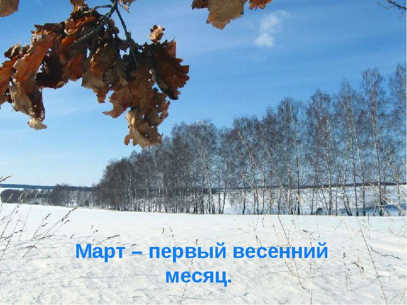Март – первый весенний месяц.