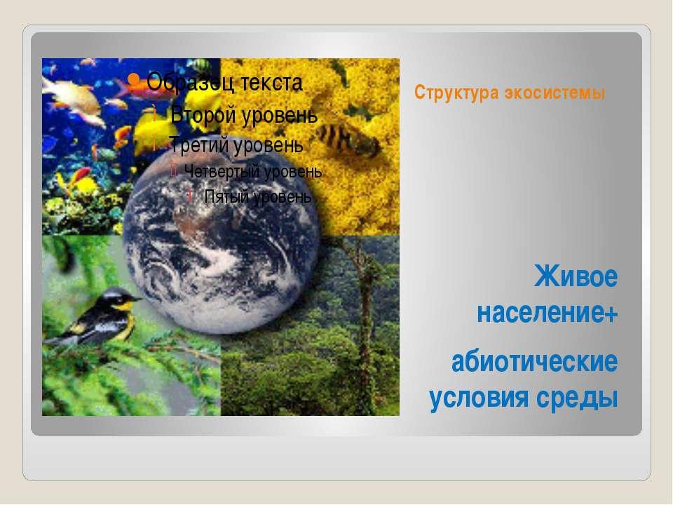 Структура экосистемы Живое население+ абиотические условия среды