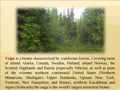 Taiga is a biome characterized by coniferous forests. Covering most of inland...