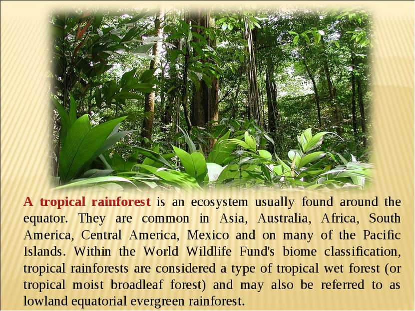 A tropical rainforest is an ecosystem usually found around the equator. They ...