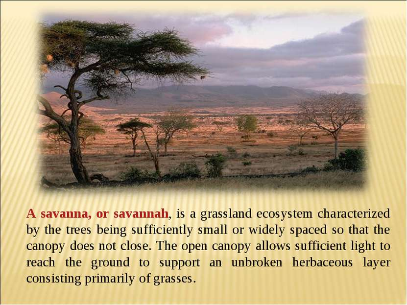 A savanna, or savannah, is a grassland ecosystem characterized by the trees b...