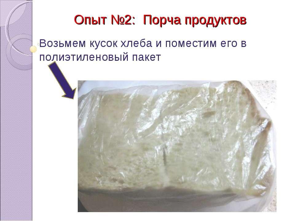 Опыт №2: Порча продуктов Возьмем кусок хлеба и поместим его в полиэтиленовый ...