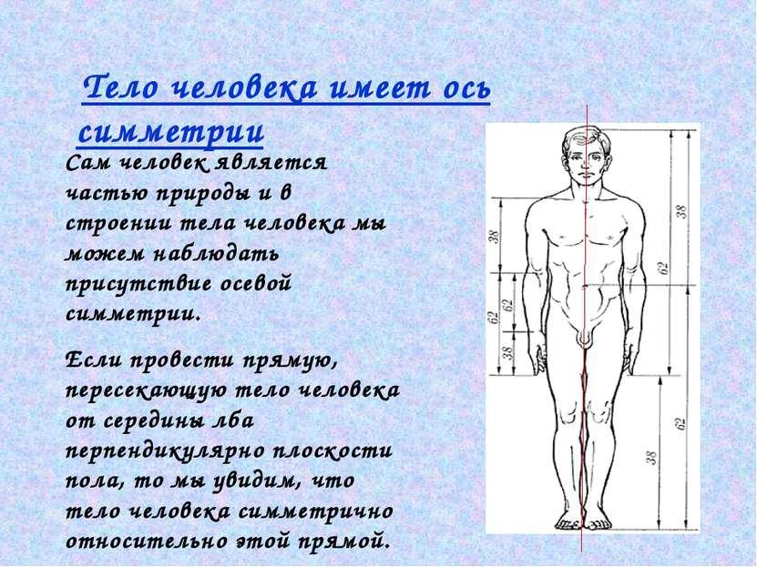 Тело человека имеет ось симметрии Сам человек является частью природы и в стр...