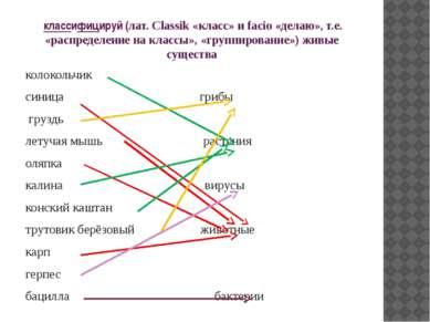 классифицируй (лат. Classik «класс» и facio «делаю», т.е. «распределение на к...