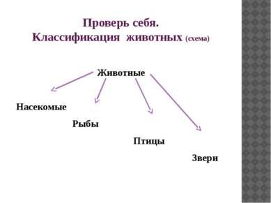 Проверь себя. Классификация животных (схема) Животные Насекомые Рыбы Птицы Звери