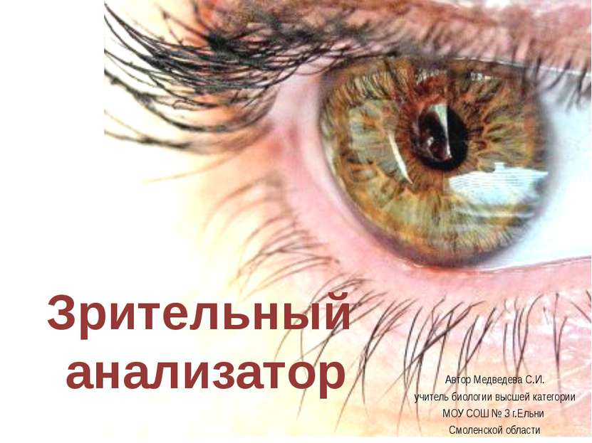 Зрительный анализатор Автор Медведева С.И. учитель биологии высшей категории ...