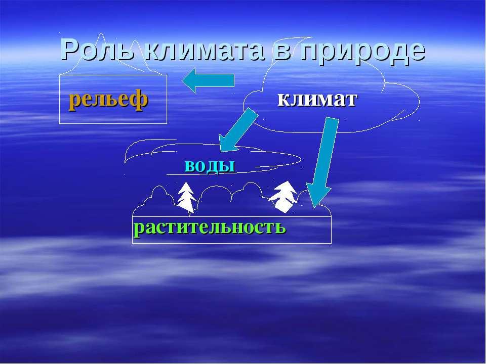 рельеф климат воды растительность Роль климата в природе