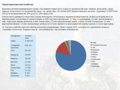 Общая характеристика хозяйства. Бразилия ключевая развивающаяся страна. Она з...