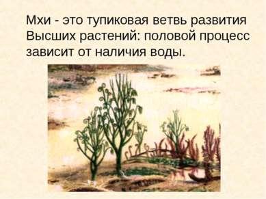 * Мхи - это тупиковая ветвь развития Высших растений: половой процесс зависит...