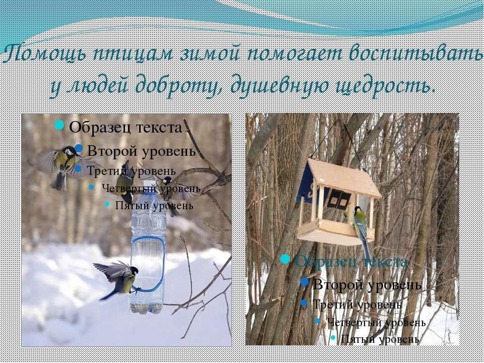 Помощь птицам зимой помогает воспитывать у людей доброту, душевную щедрость.