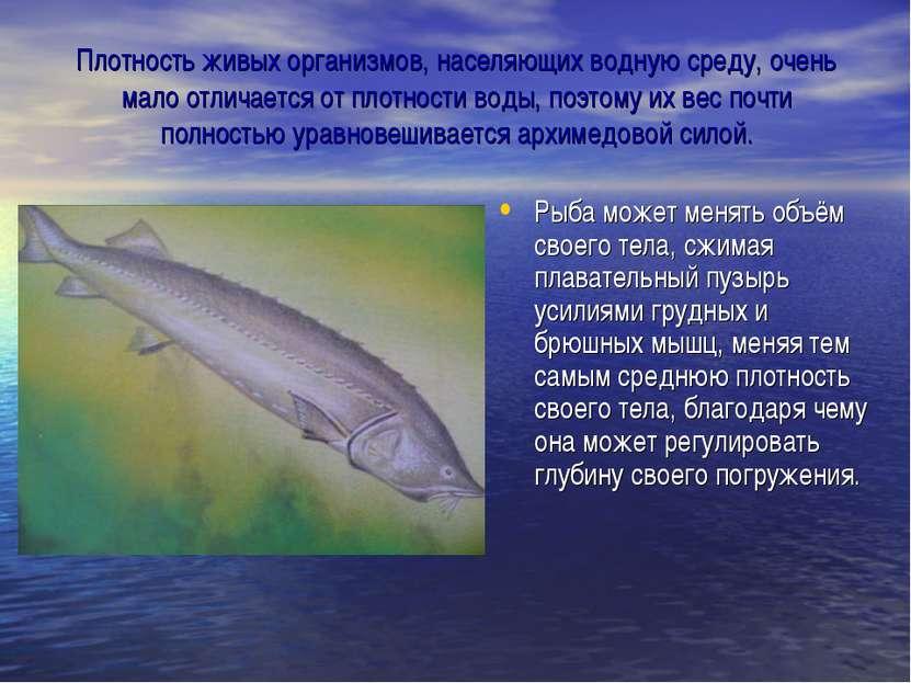 Плотность живых организмов, населяющих водную среду, очень мало отличается от...