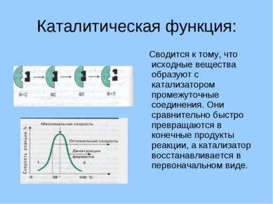 Каталитическая функция: Сводится к тому, что исходные вещества образуют с кат...