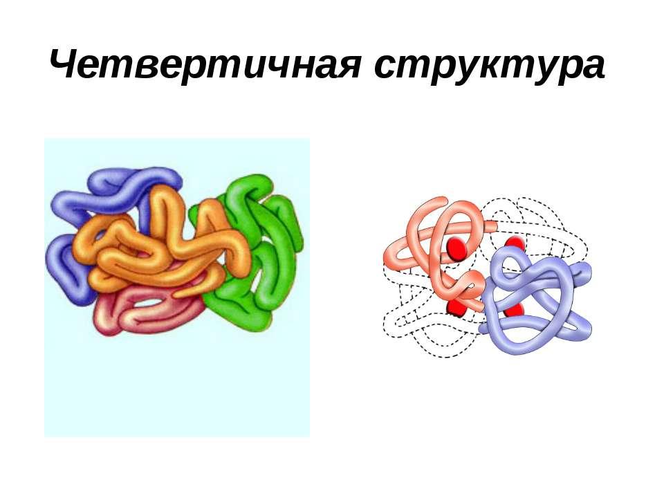 Четвертичная структура