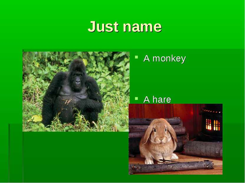 Just name A monkey A hare