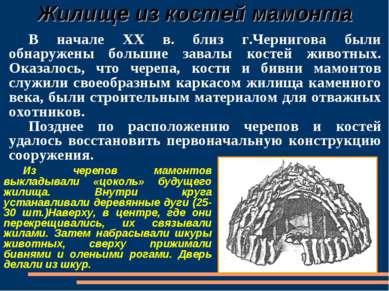 Жилище из костей мамонта В начале XX в. близ г.Чернигова были обнаружены боль...
