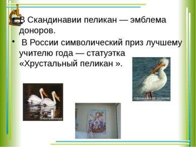 В Скандинавии пеликан — эмблема доноров. В России символический приз лучшему ...
