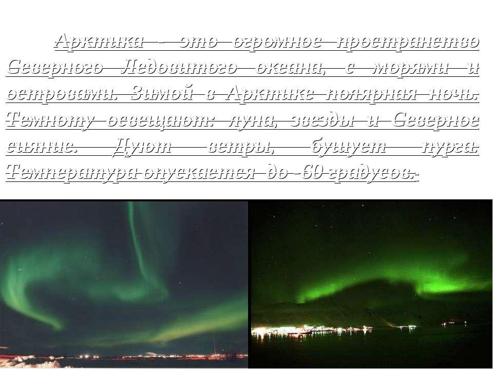 Арктика - это огромное пространство Северного Ледовитого океана, с морями и о...